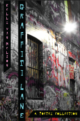 front-cover-graffiti-lane-final_1_orig405671272.png