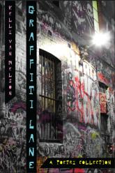 front-cover-graffiti-lane-final_1_orig405671272.png
